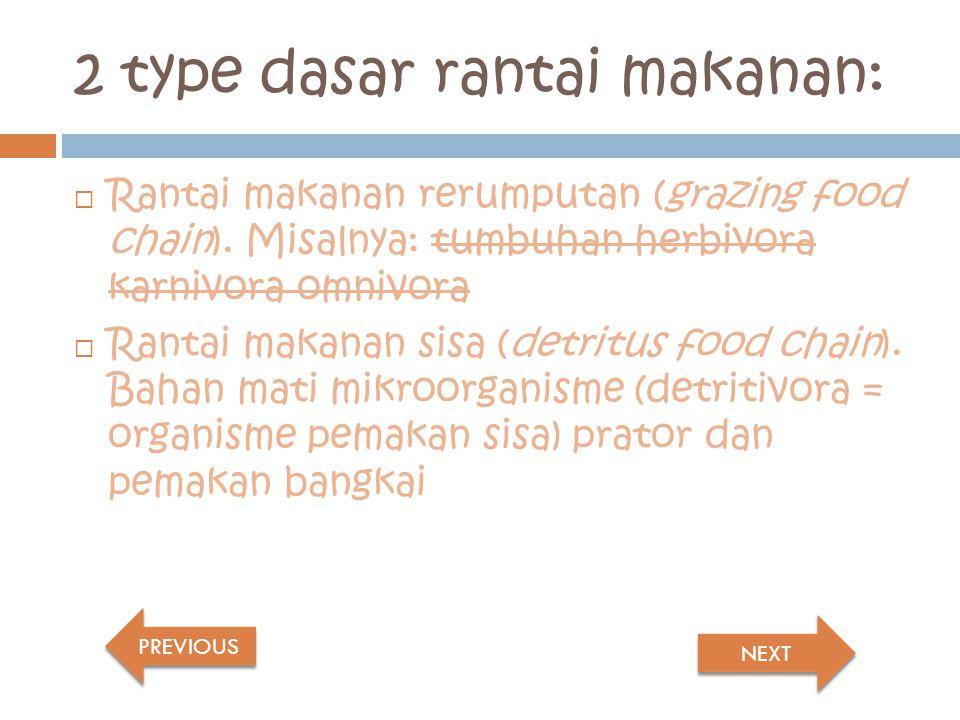 2 type dasar rantai makanan: