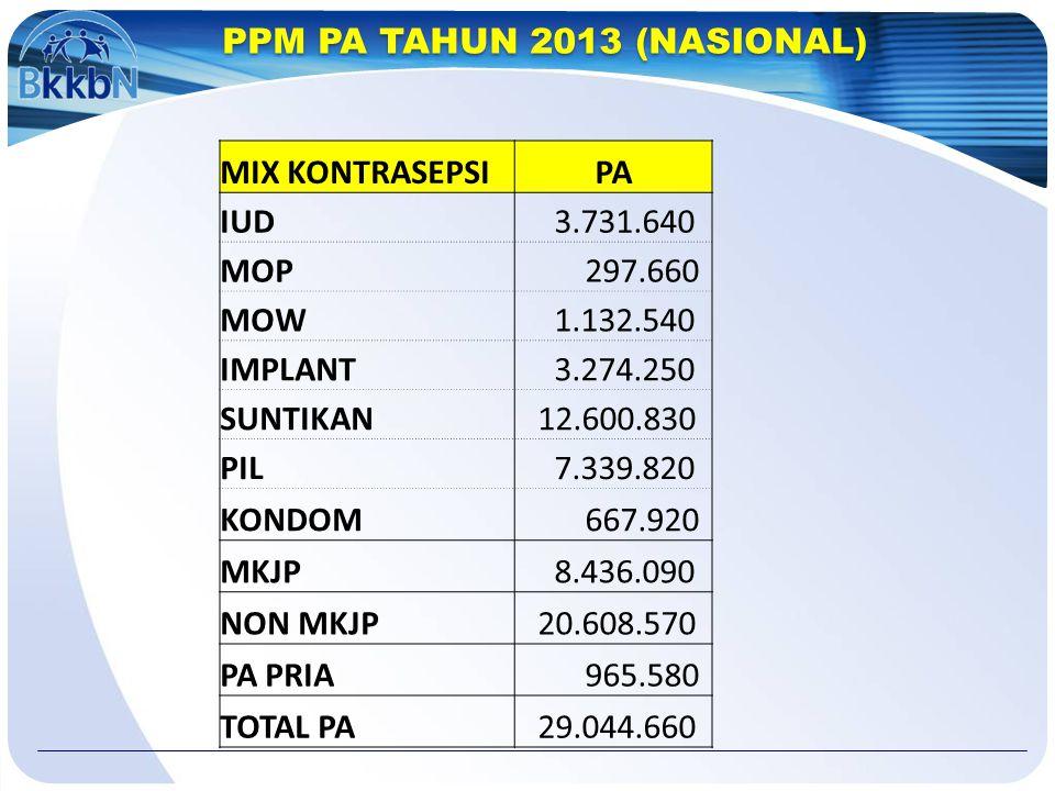 PPM PA TAHUN 2013 (NASIONAL)