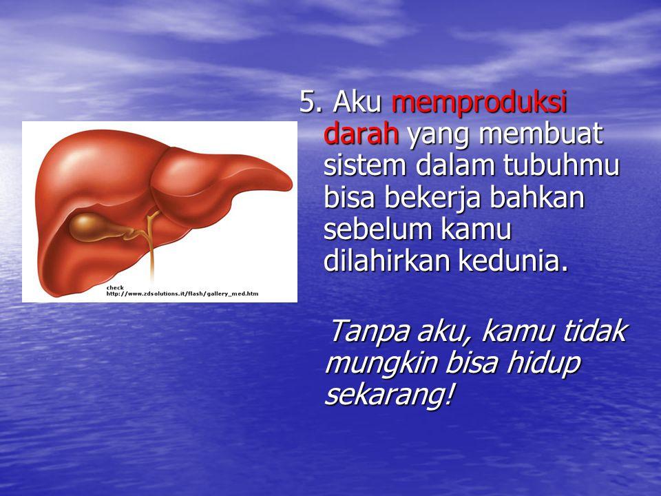 5. Aku memproduksi darah yang membuat sistem dalam tubuhmu bisa bekerja bahkan sebelum kamu dilahirkan kedunia.
