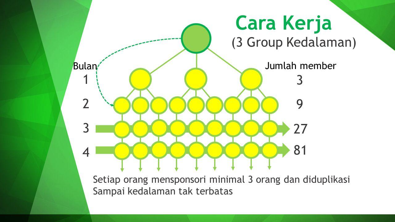 Cara Kerja (3 Group Kedalaman) 1 3 2 9 3 27 81 4 Bulan Jumlah member