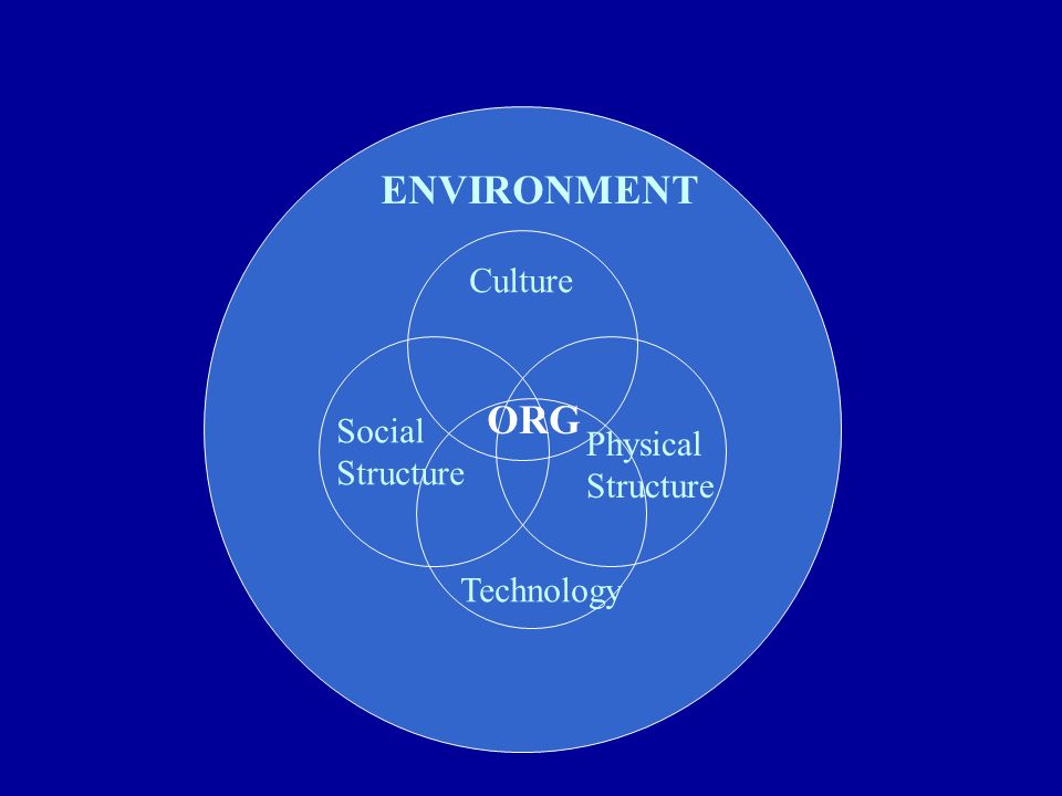ENVIRONMENT Culture ORG Social Structure Physical Structure Technology