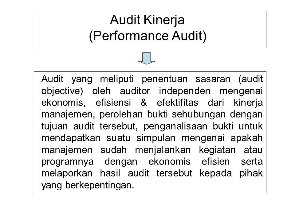 Audit Kinerja (Performance Audit)