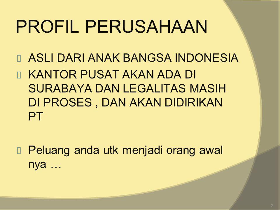PROFIL PERUSAHAAN ASLI DARI ANAK BANGSA INDONESIA