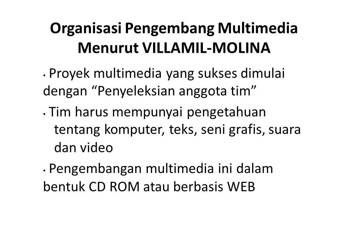 Organisasi Pengembang Multimedia Menurut VILLAMIL-MOLINA