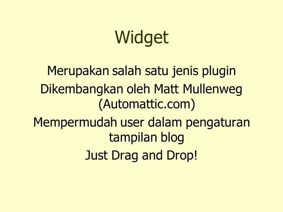 Widget Merupakan salah satu jenis plugin