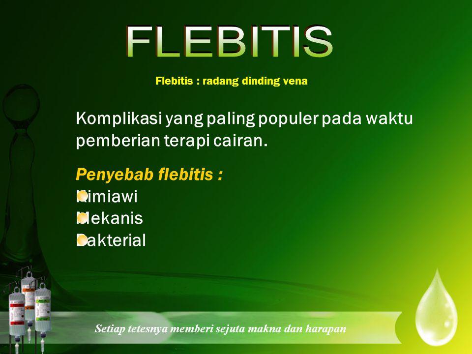 FLEBITIS Flebitis : radang dinding vena. Komplikasi yang paling populer pada waktu pemberian terapi cairan.