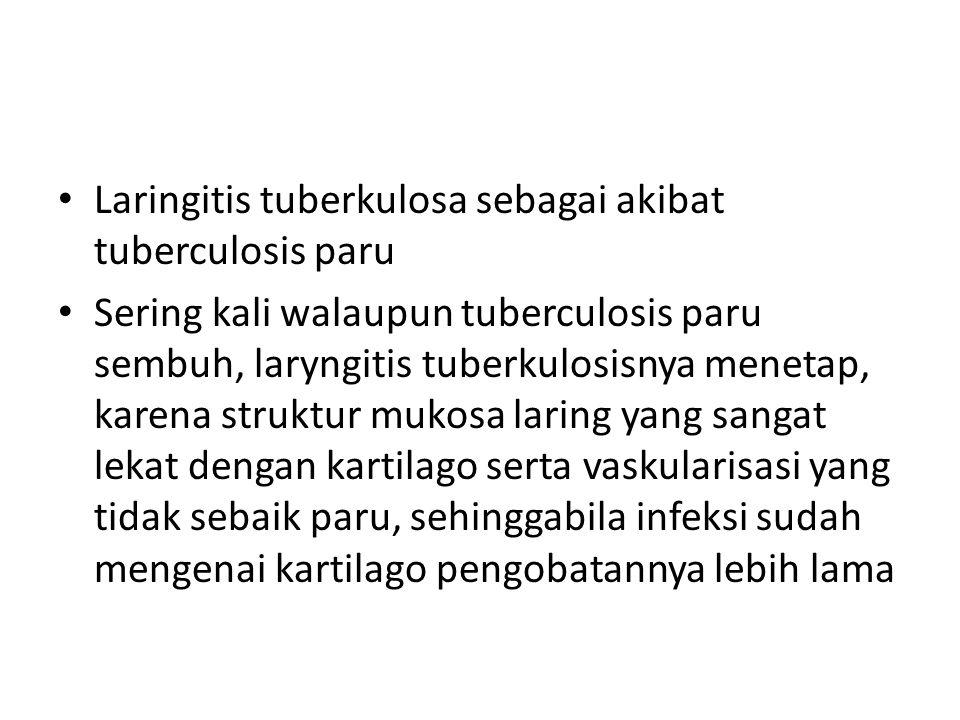 Laringitis tuberkulosa sebagai akibat tuberculosis paru