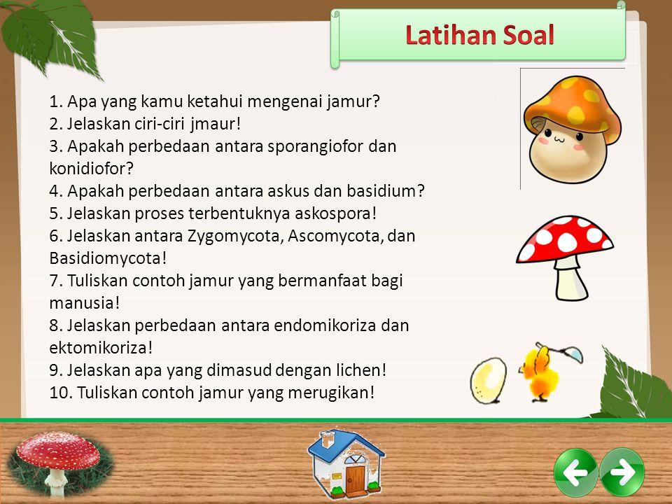Latihan Soal 1. Apa yang kamu ketahui mengenai jamur