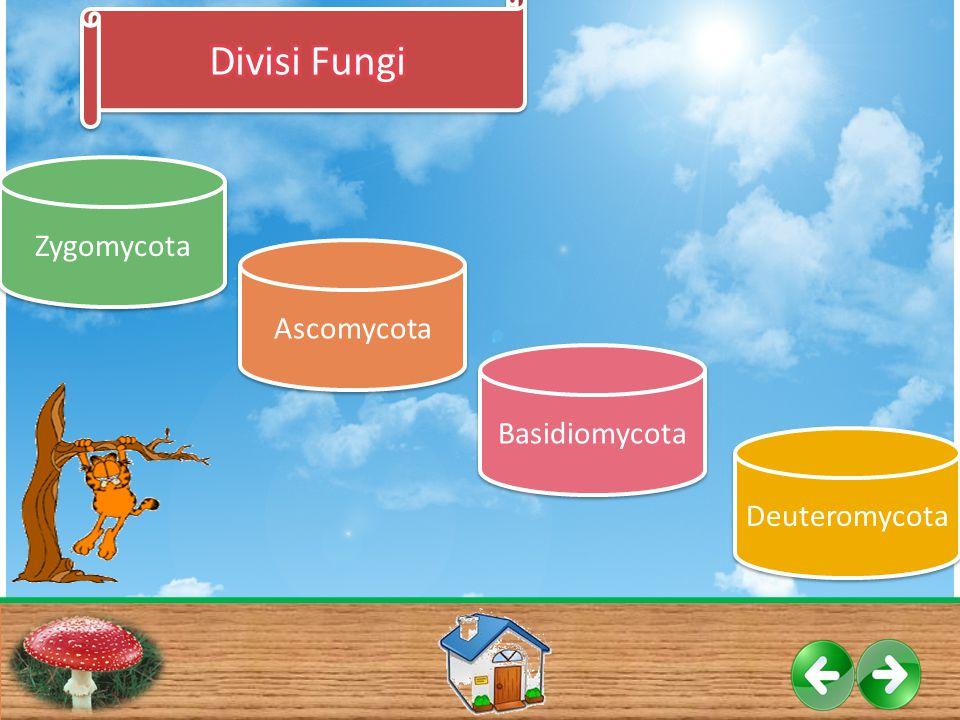 Divisi Fungi Zygomycota Ascomycota Basidiomycota Deuteromycota