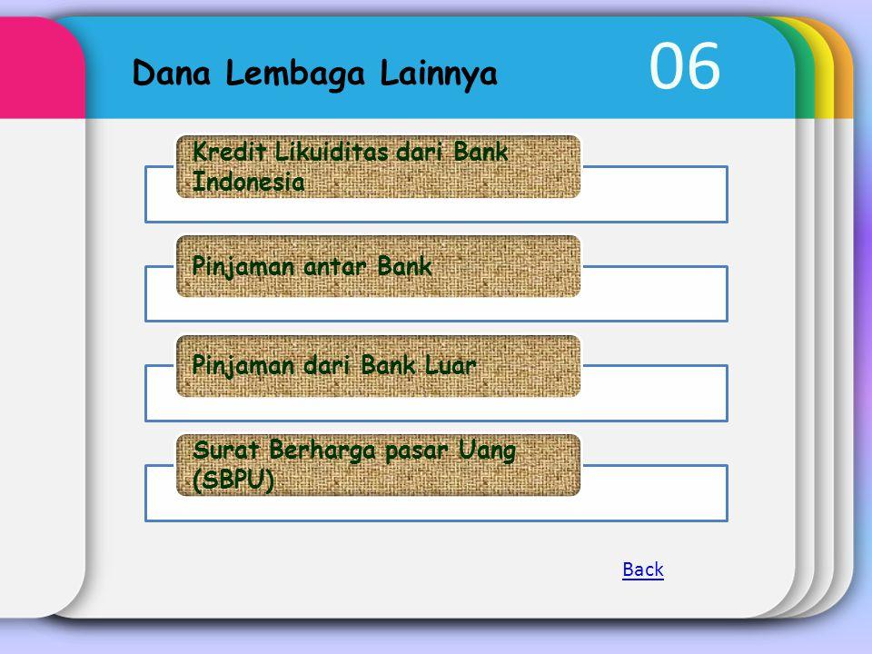 06 Dana Lembaga Lainnya Kredit Likuiditas dari Bank Indonesia