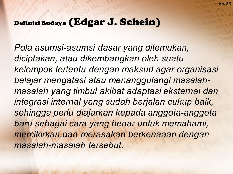 Definisi Budaya (Edgar J. Schein)