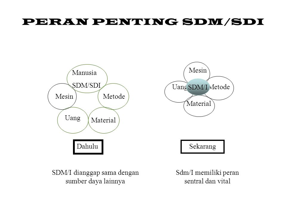 PERAN PENTING SDM/SDI Mesin Manusia SDM/SDI SDM/I Uang SDM I Metode