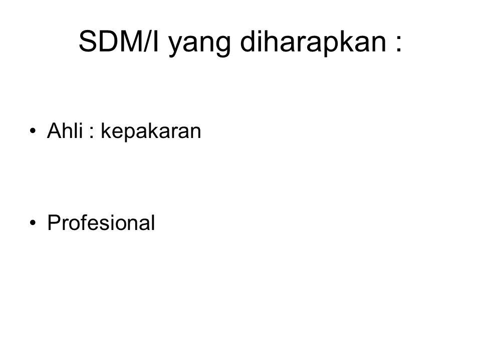 SDM/I yang diharapkan :