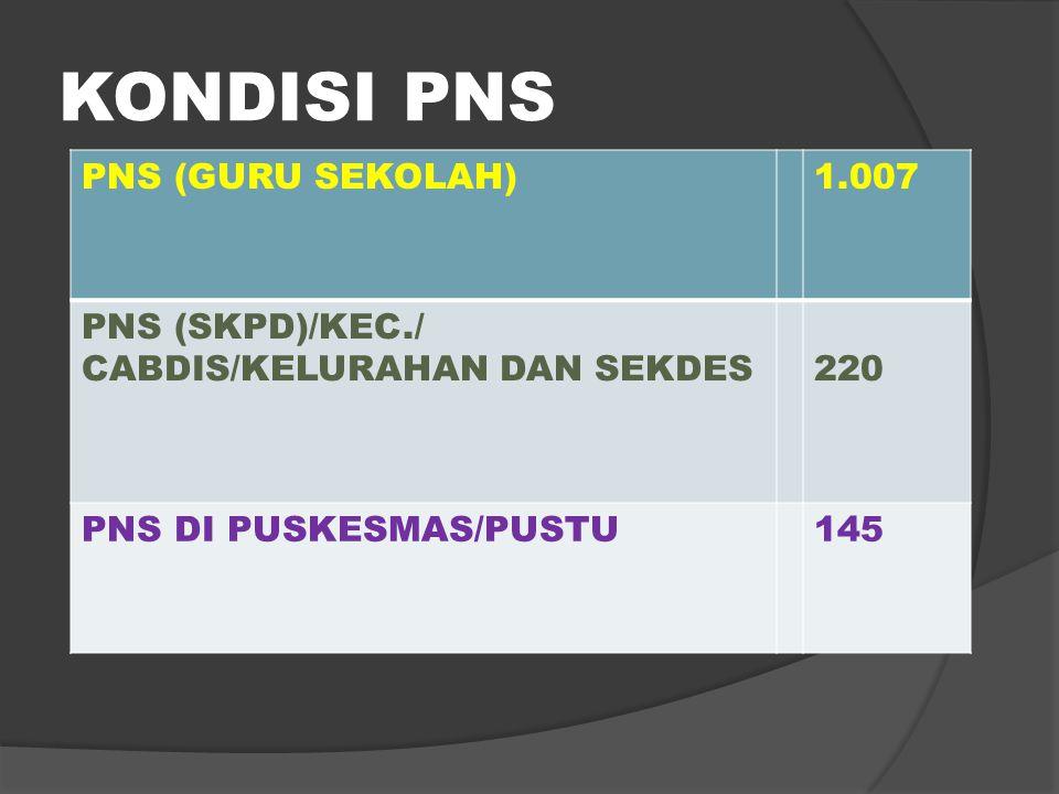 KONDISI PNS PNS (GURU SEKOLAH) 1.007