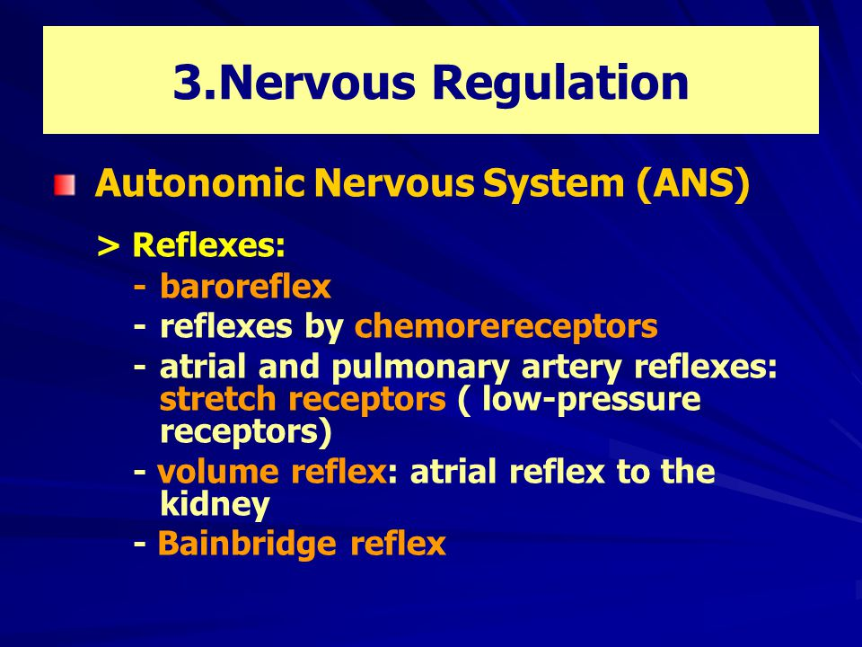3.Nervous Regulation Autonomic Nervous System (ANS) > Reflexes: