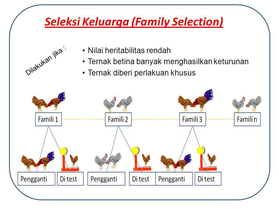 Seleksi Keluarga (Family Selection)