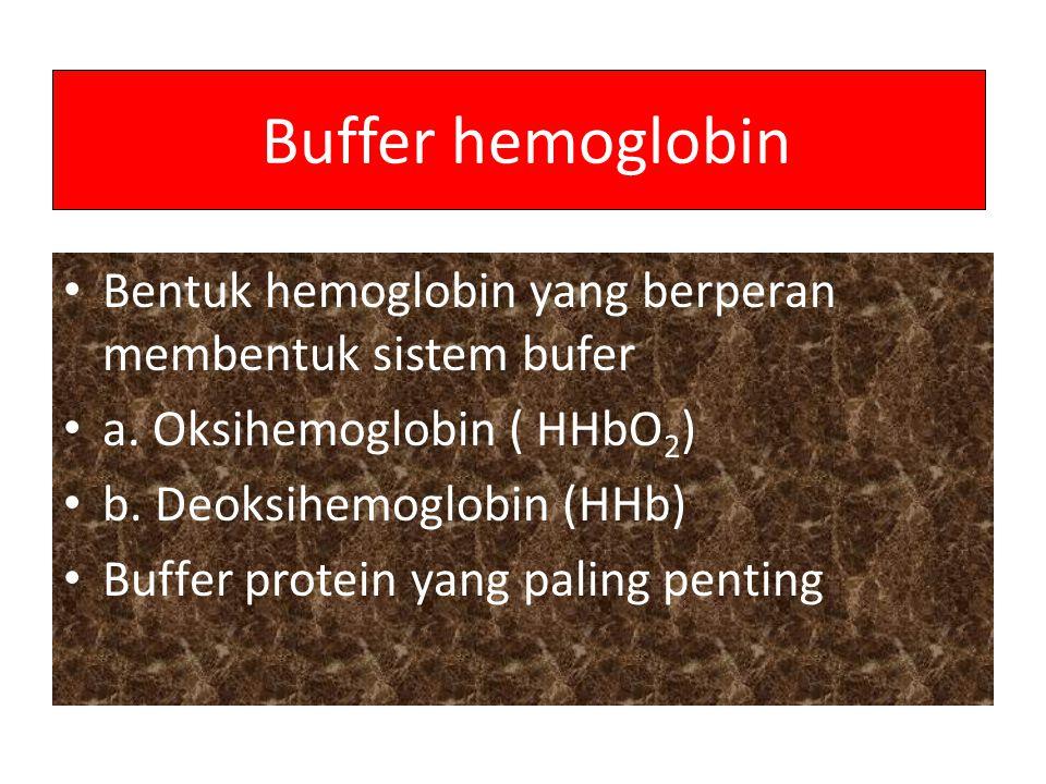 Buffer hemoglobin Bentuk hemoglobin yang berperan membentuk sistem bufer. a. Oksihemoglobin ( HHbO2)