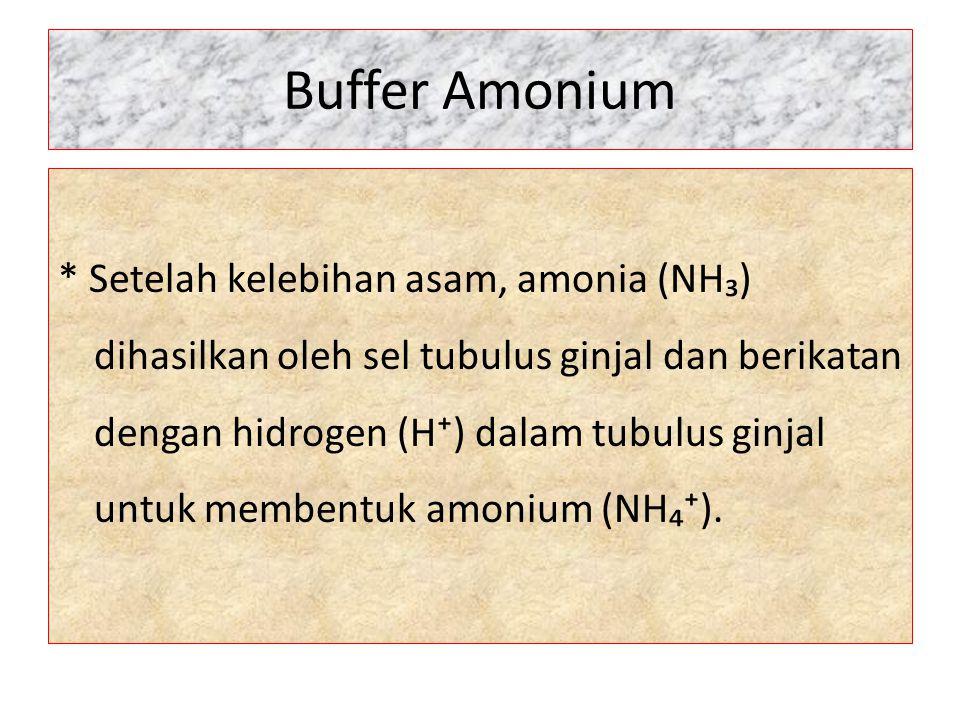 Buffer Amonium