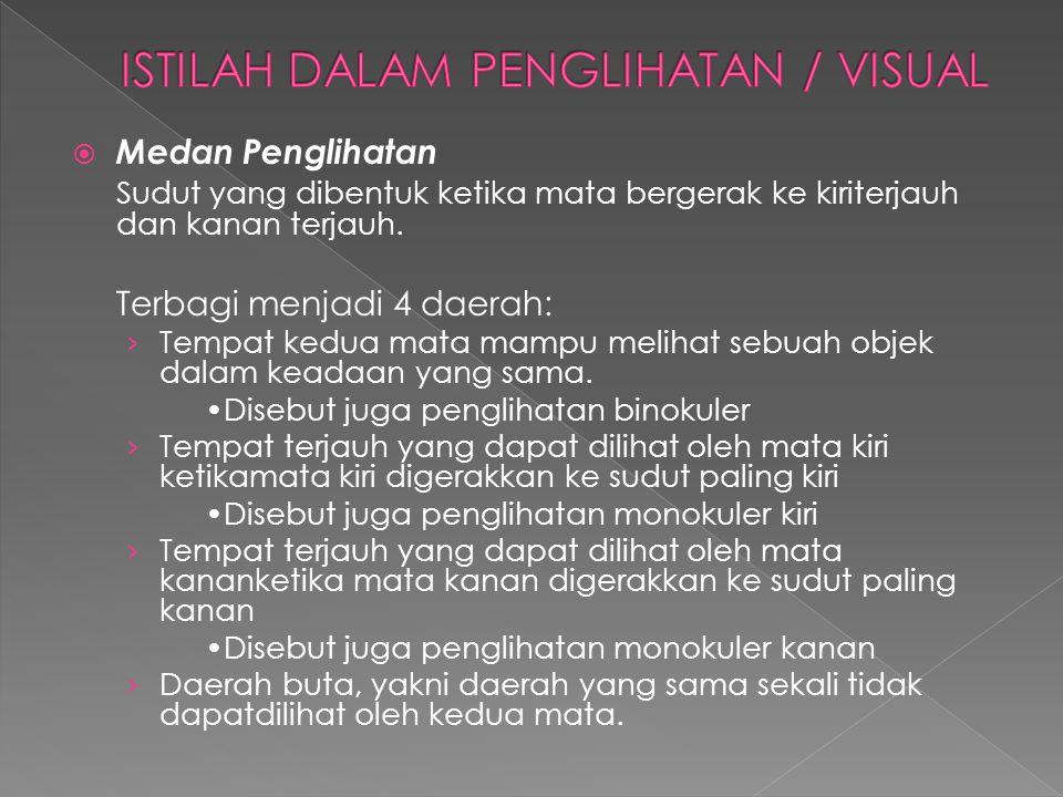 ISTILAH DALAM PENGLIHATAN / VISUAL