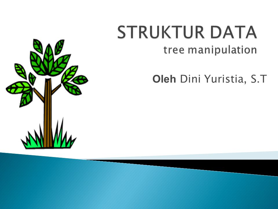 STRUKTUR DATA tree manipulation