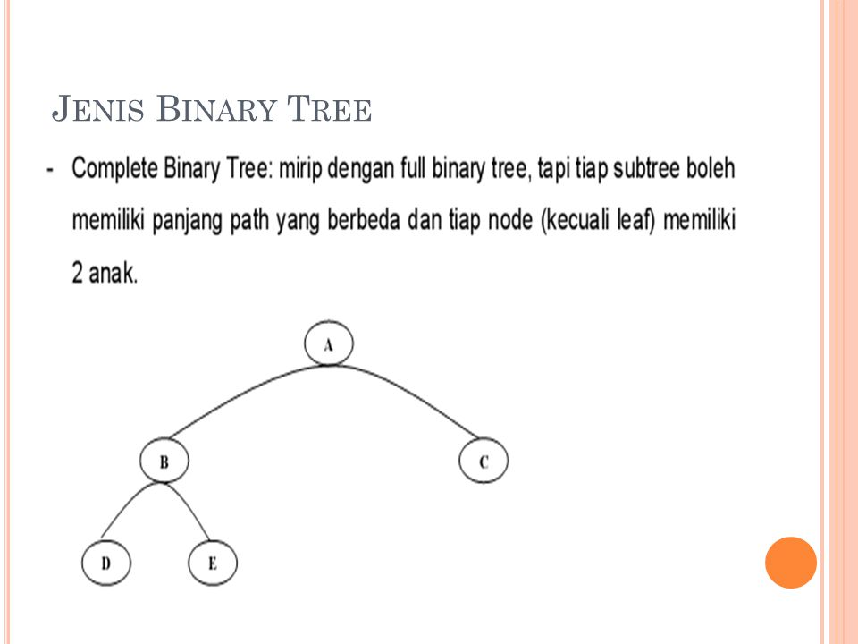 Jenis Binary Tree
