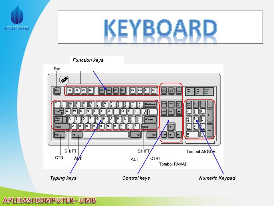 Keyboard Typing keys Control keys Numeric Keypad Function keys