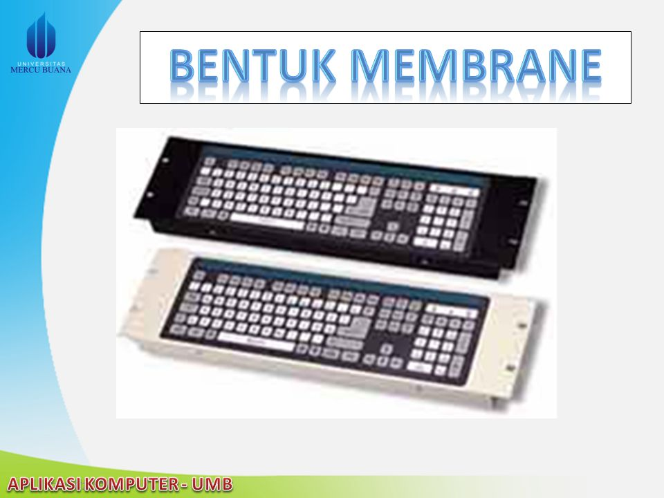 Bentuk membrane
