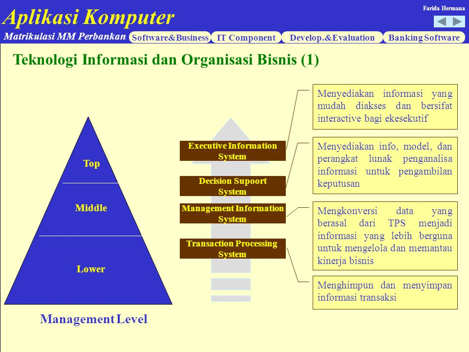 Executive Information Management Information Transaction Processing