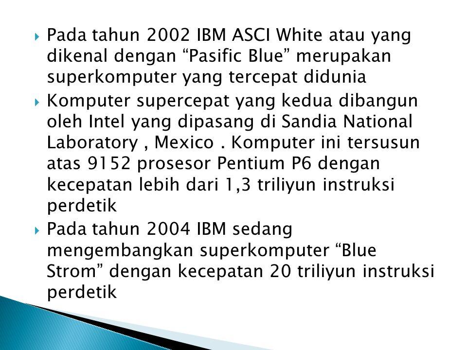 Pada tahun 2002 IBM ASCI White atau yang dikenal dengan Pasific Blue merupakan superkomputer yang tercepat didunia