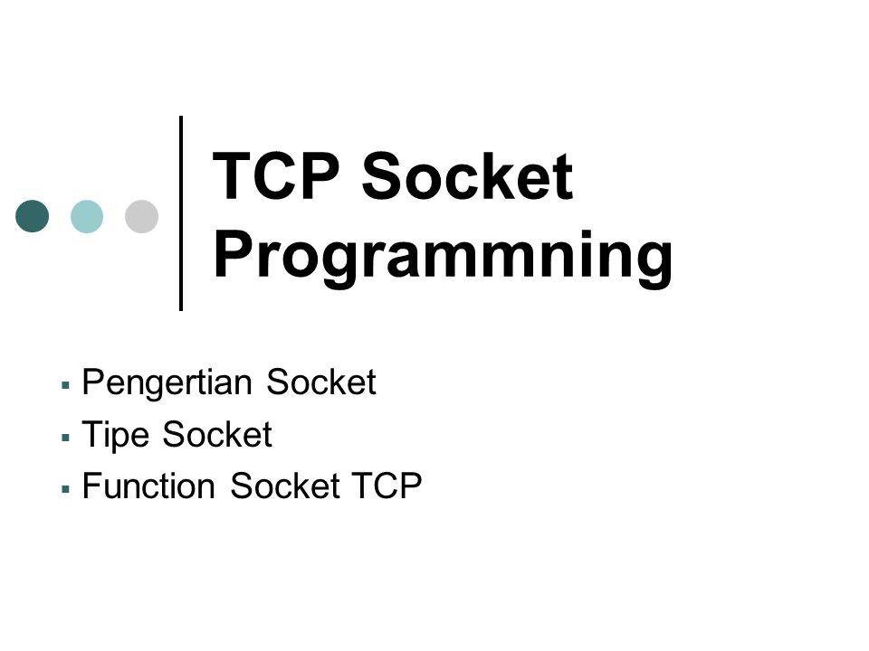 TCP Socket Programmning