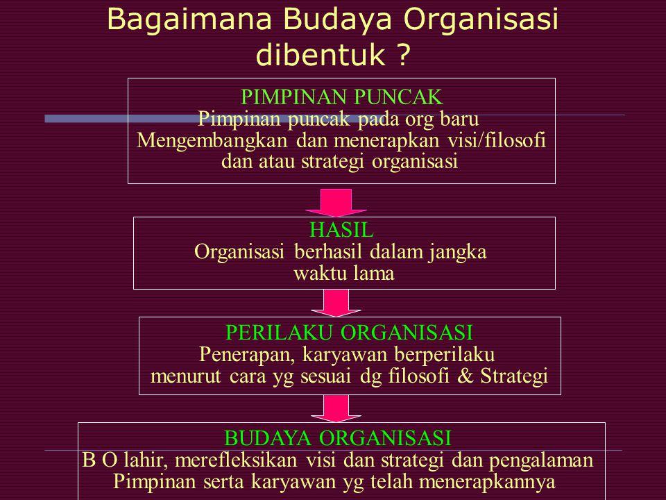 Bagaimana Budaya Organisasi dibentuk