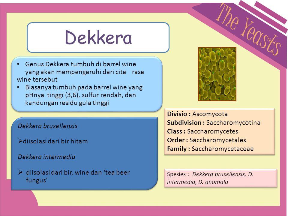 Dekkera Genus Dekkera tumbuh di barrel wine yang akan mempengaruhi dari cita rasa wine tersebut.