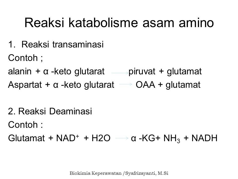 Reaksi katabolisme asam amino
