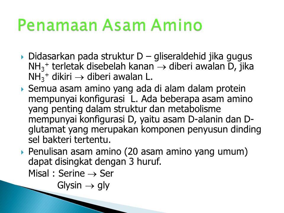 Penamaan Asam Amino