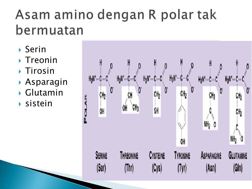Asam amino dengan R polar tak bermuatan