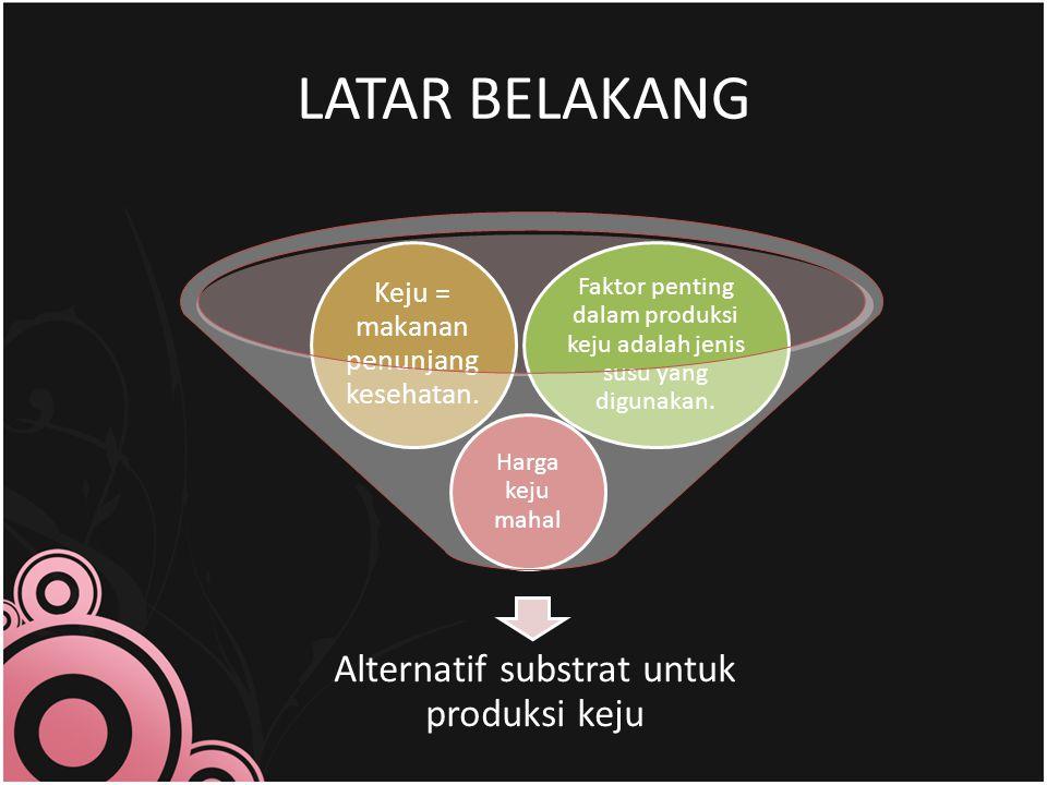 LATAR BELAKANG Faktor penting dalam produksi keju adalah jenis susu yang digunakan. Keju = makanan penunjang kesehatan.