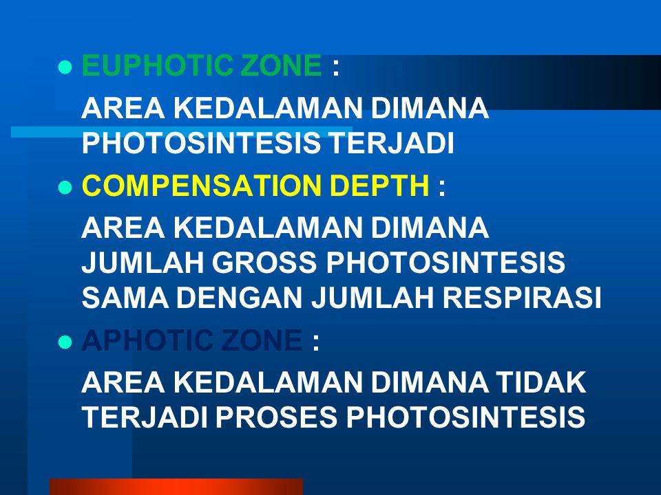 EUPHOTIC ZONE : AREA KEDALAMAN DIMANA PHOTOSINTESIS TERJADI. COMPENSATION DEPTH :