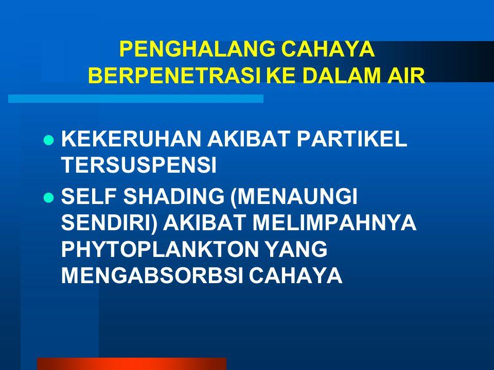 PENGHALANG CAHAYA BERPENETRASI KE DALAM AIR