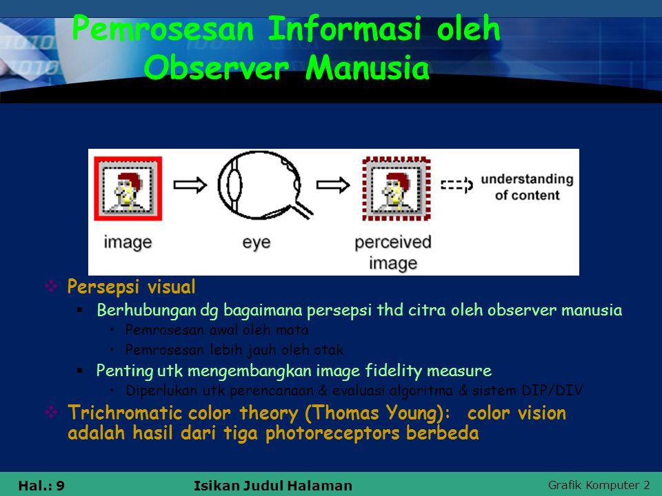 Pemrosesan Informasi oleh Observer Manusia