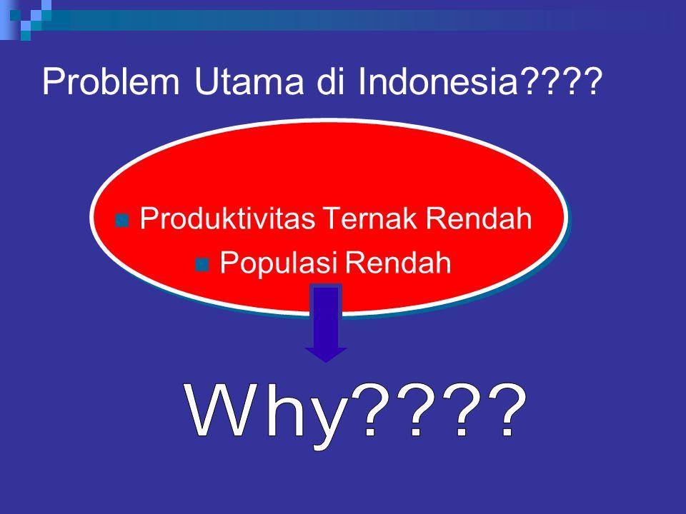 Problem Utama di Indonesia