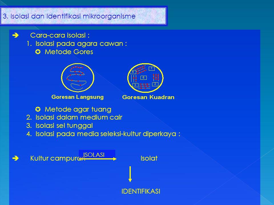 3. Isolasi dan Identifikasi mikroorganisme