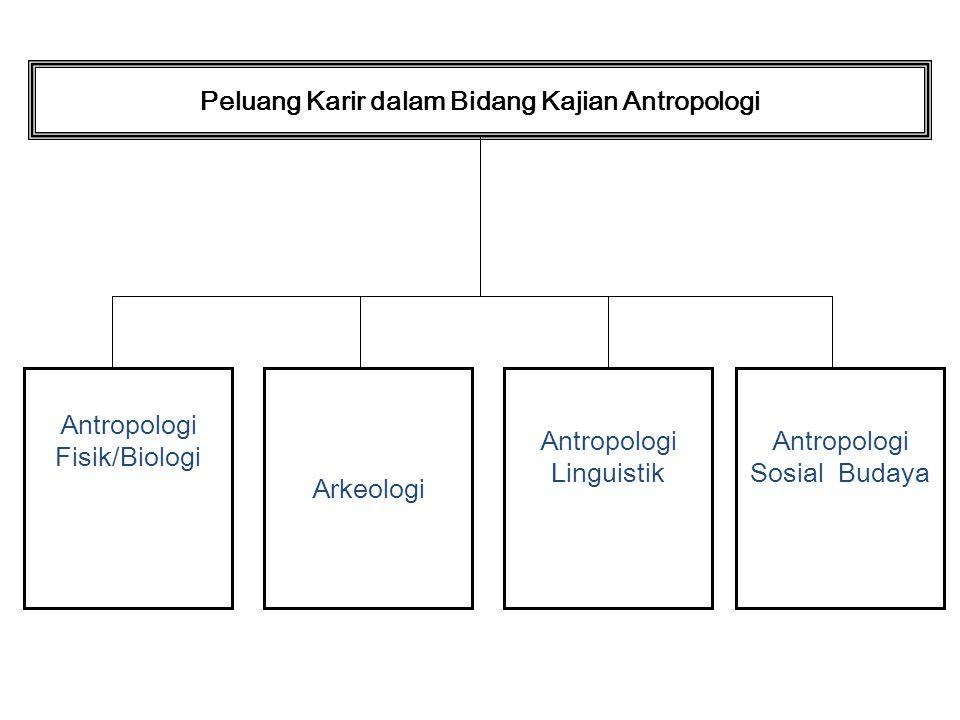 Peluang Karir dalam Bidang Kajian Antropologi