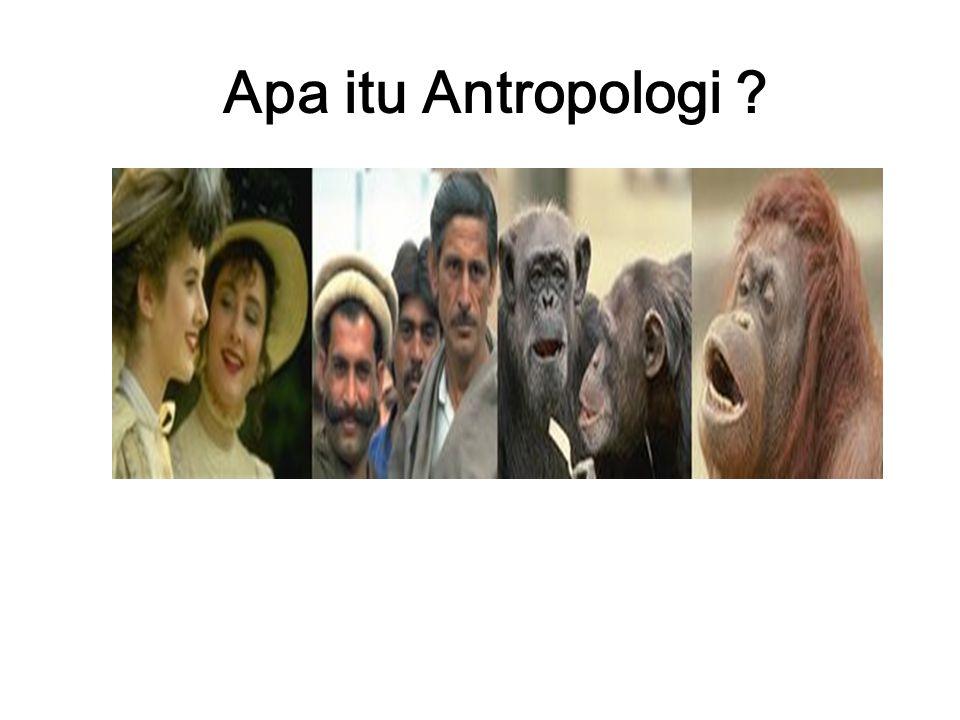 Apa itu Antropologi