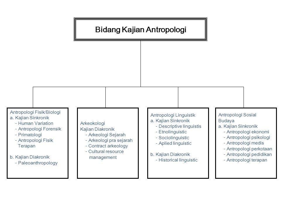 Bidang Kajian Antropologi
