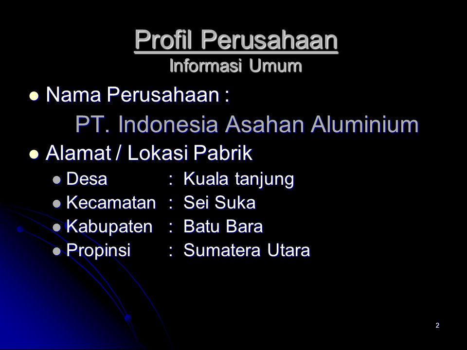 Profil Perusahaan Informasi Umum