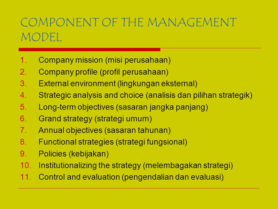 COMPONENT OF THE MANAGEMENT MODEL