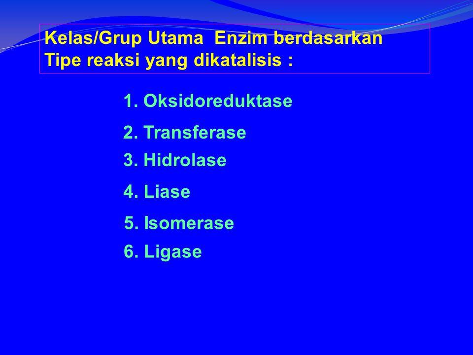 Kelas/Grup Utama Enzim berdasarkan Tipe reaksi yang dikatalisis :