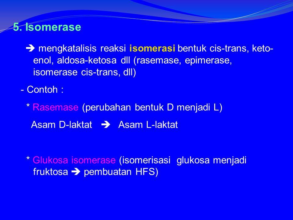 5. Isomerase  mengkatalisis reaksi isomerasi bentuk cis-trans, keto-enol, aldosa-ketosa dll (rasemase, epimerase, isomerase cis-trans, dll)