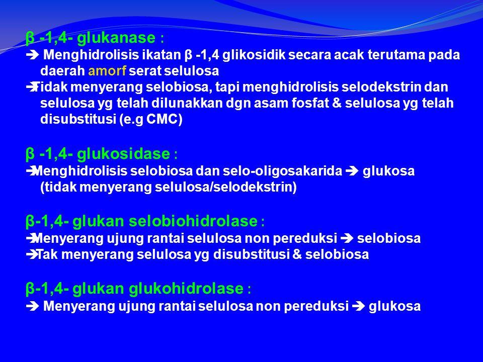 β-1,4- glukan selobiohidrolase :