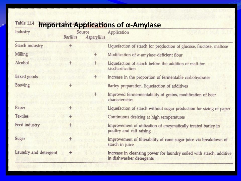 Important Applications of α-Amylase